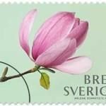 150507_frimarke_rosa-magnolia